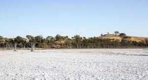 Lake dry January 2014